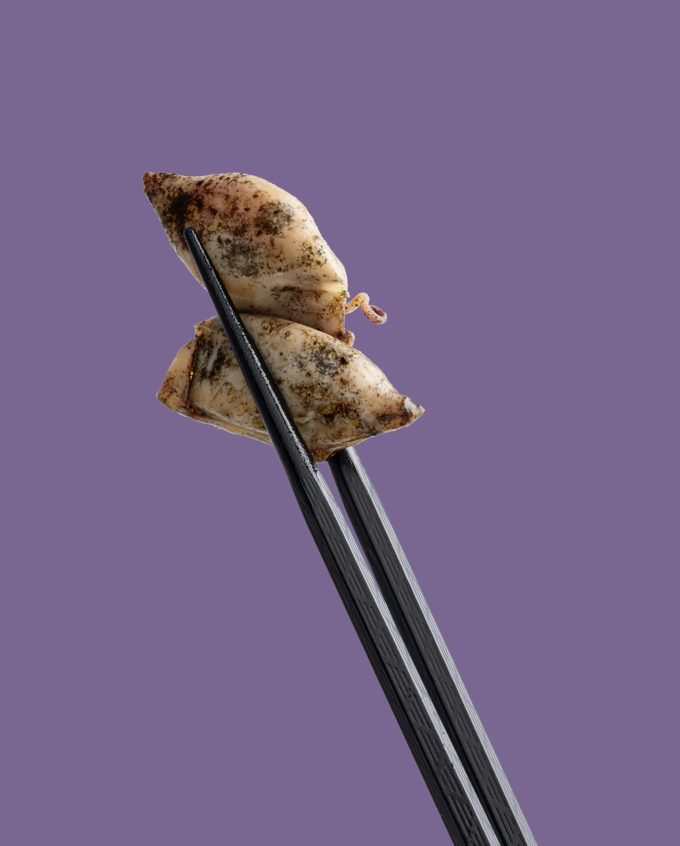 Puntillitas de chipirón en su tinta Canthynnus servicio